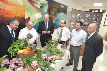 Unique environment created at BOV Gozo Branch for community week