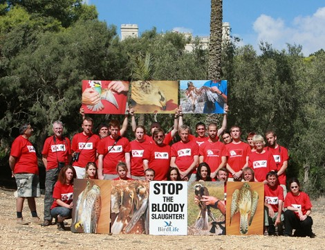 International conservationists call for increased action against illegal hunting