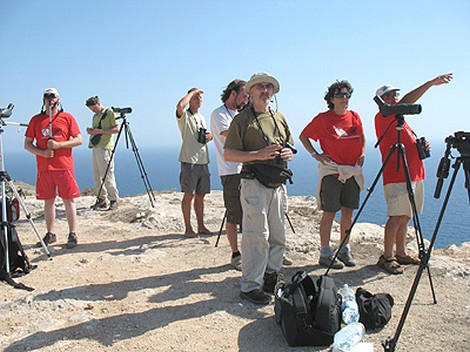 Birdlife demands that police ensure the safety of birdwatchers