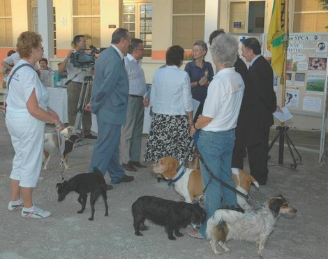 San Lawrenz launches the first project of pet neutering in Malta and Gozo