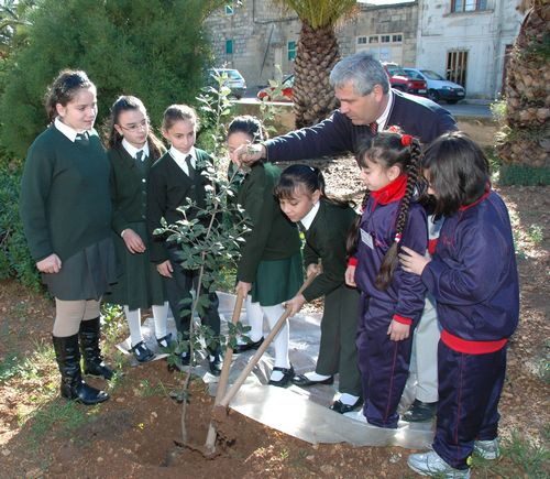 Gozo's Arbor Day commemorated at Xewkija
