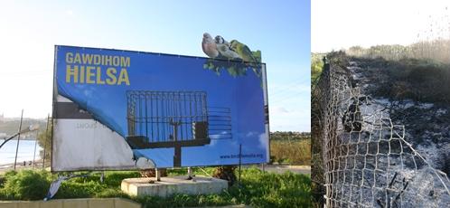 Arsonists attack Ghadira Nature Reserve & Billboard