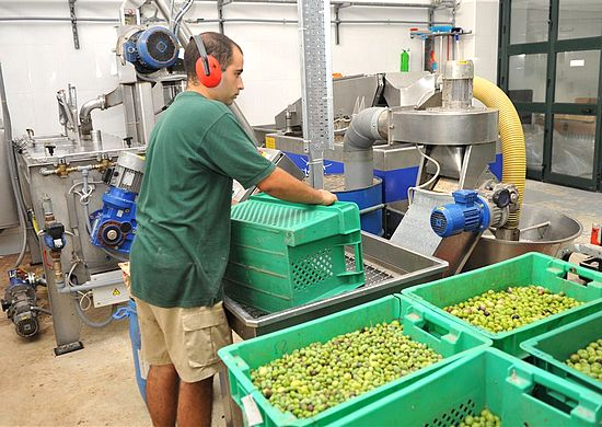 Gozo agricultural sector benefits from European funding