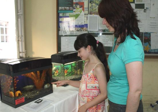 Malta Aquarist Society - Gozo Section holds annual show