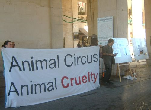 20 organisations join forces for animal rights