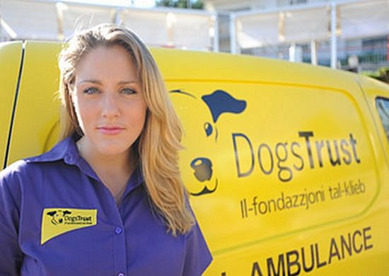 10,000 dogs neutered & micro-chipped by Dogs Trust Malta