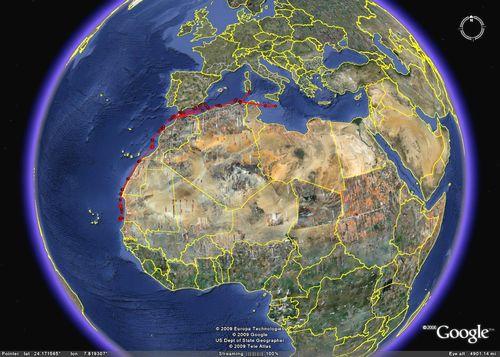 Maltese Shearwater travels to Senegal