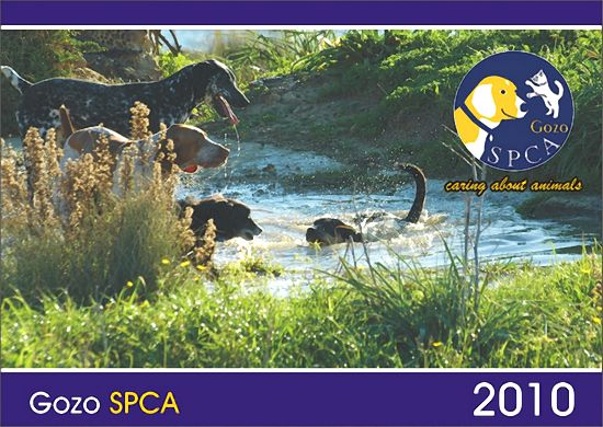 Pet photo's requested for Gozo SPCA 2011 calender