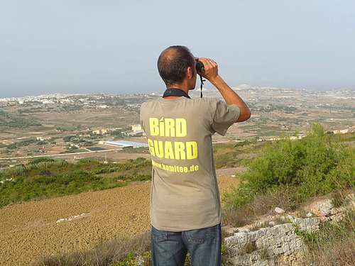 CABS to send eight bird guards to monitor spring hunting
