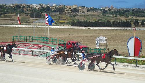 Gozo Horse Racing Association launches Gozo Equine Cup