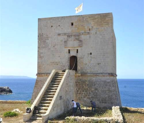 MCAST students clean up around Mgarr ix-Xini Tower