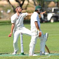 Summer cricket league division one and two games