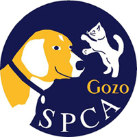 Gozo SPCA obtains licence: isolation/quarantine unit needed urgently