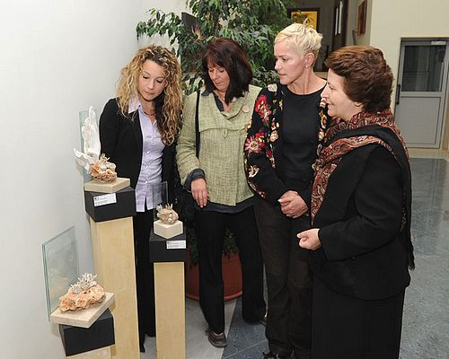 AquArt Exhibition recently inaugurated at the ITS in Qala