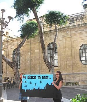 Important Bird Area in Valletta damaged again - Birdlife