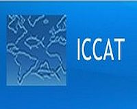 EU tables ambitious proposals to protect sharks - ICCAT
