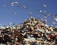 MEPA tightens enforcement on packaging waste regulations
