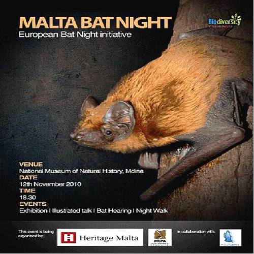 Night of The Bats - Biodiversity, It's your Life, Protect it