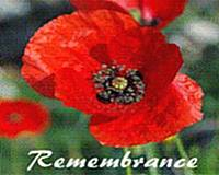 Gozo sub branch of the British Legion Annual Poppy Appeal