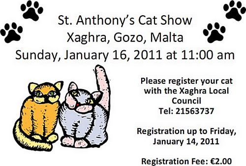St Anthony's Cat Show being held this Sunday in Xaghra