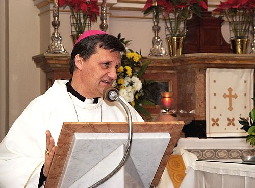 Pastoral action needed for separated couples : Bishop Grech