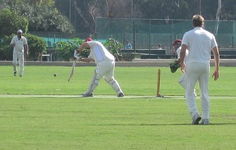 Captain's team played Chairman's team in Saturday's cricket