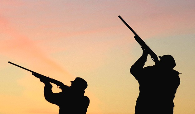 PN. AD & DLH all welcome Government's decision to close hunting season