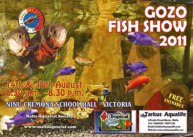 The 7th annual Gozo Fish Show takes place next weekend