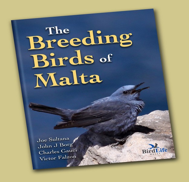 New publication celebrates The Breeding Birds of Malta