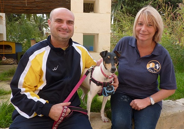 The Gozo SPCA's 'Open Morning' was another great success