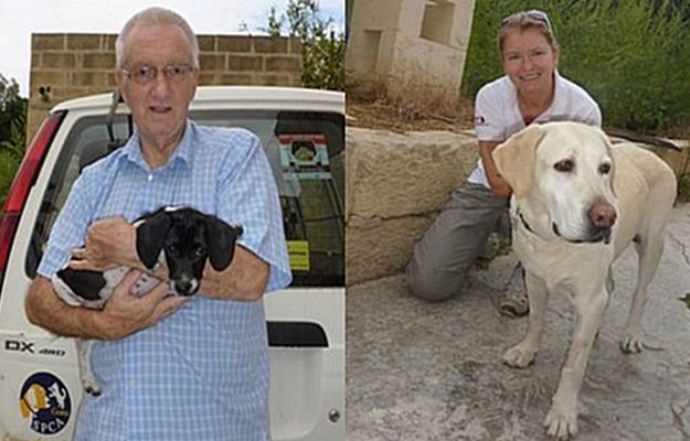 Gozo SPCA receives a good response for its Open Day