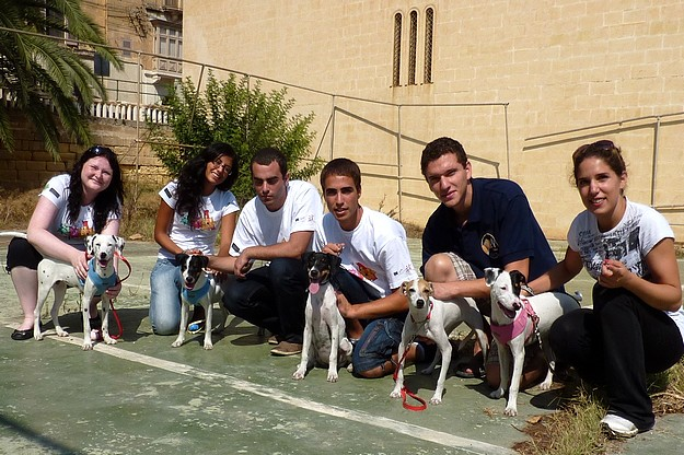 Young people from Malta and Finland visit the Gozo SPCA