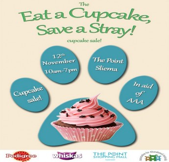 Eat a Cupcake Save a Stray -  All night 'bake-athon' for AAA