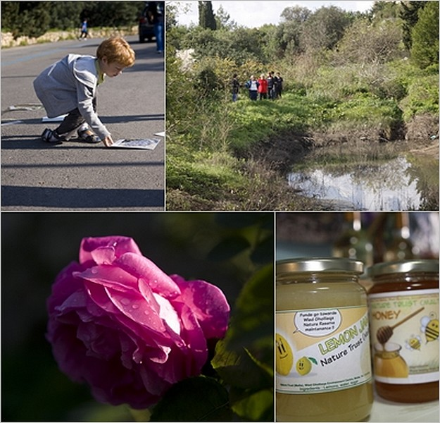 Nature Trust's first open day at Wied Ghollieqa a success