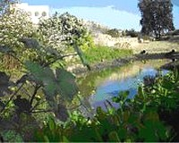 Nature Trust Open Weekend at the Wied Ghollieqa reserve
