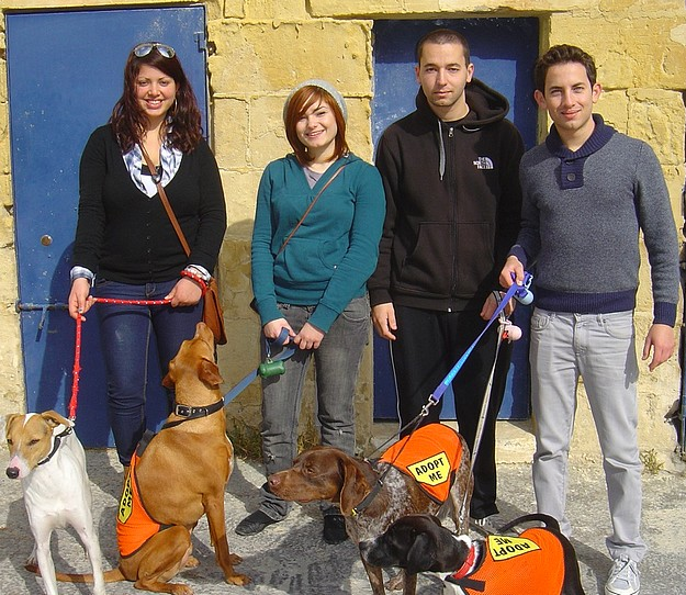 A busy Gozo SPCA 'Open Morning' despite the bad weather