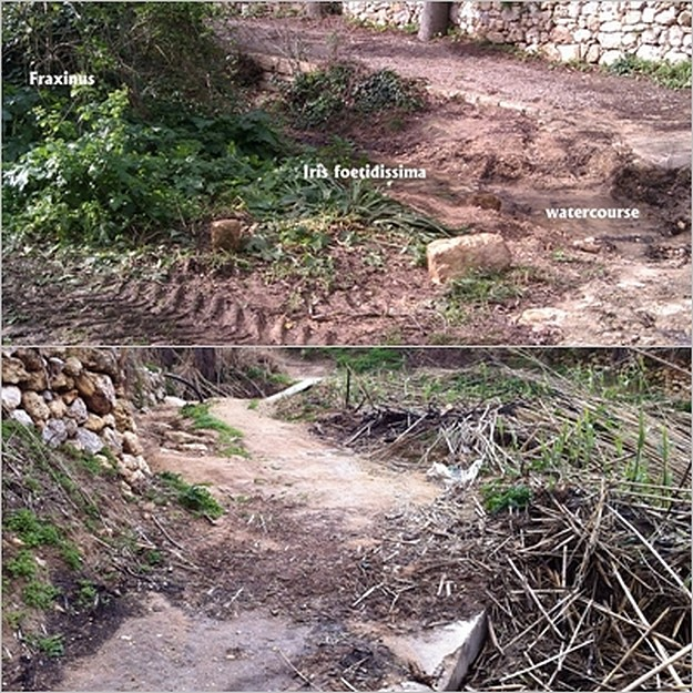 Nature Trust (Malta) concerned about valley degradation