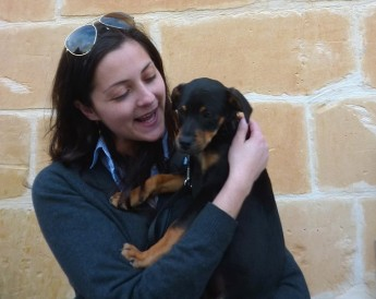 An 'Open Morning' next week at the Gozo SPCA in Victoria
