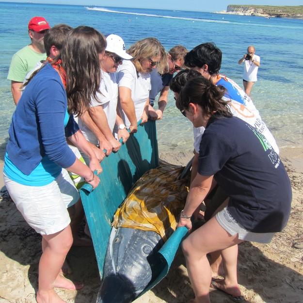 Training for Nature Trust Wildlife Rescue Team volunteers