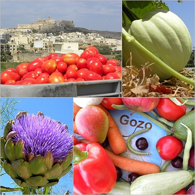 Fruit & vegetable growing season in full swing around Gozo