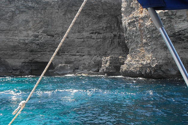 Dolphin carcass found at bottom of Ahrax cliffs in Malta