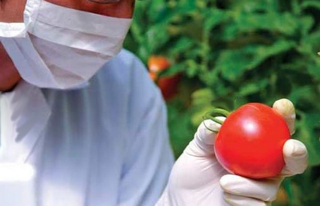 600 tests made for residue in food of plant & animal origin