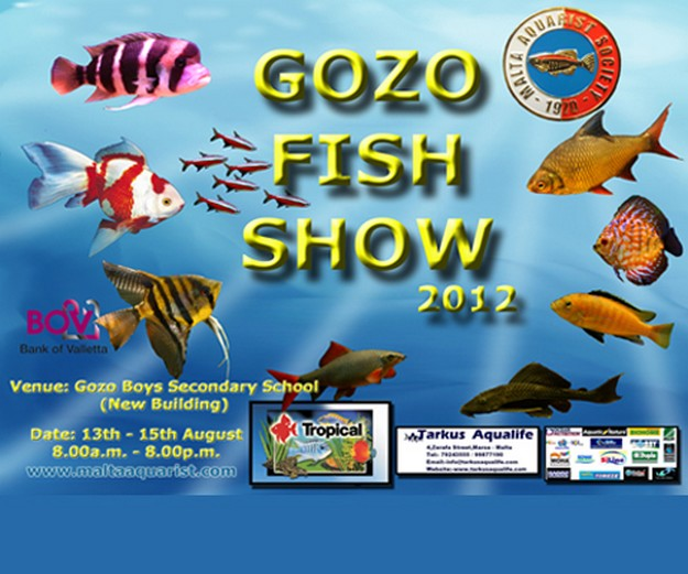 The eighth annual Gozo Fish Show taking place in Victoria