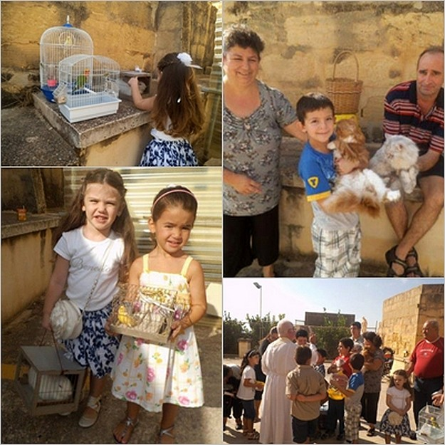 Blessing of the animals by Franciscan Friars of St Anthony's