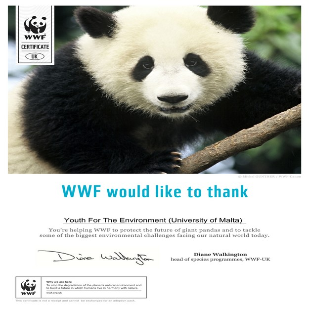 Giant Panda is chosen by students for adoption with WWF