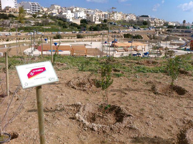 Air Malta donates trees to the new Marsaskala Family Park
