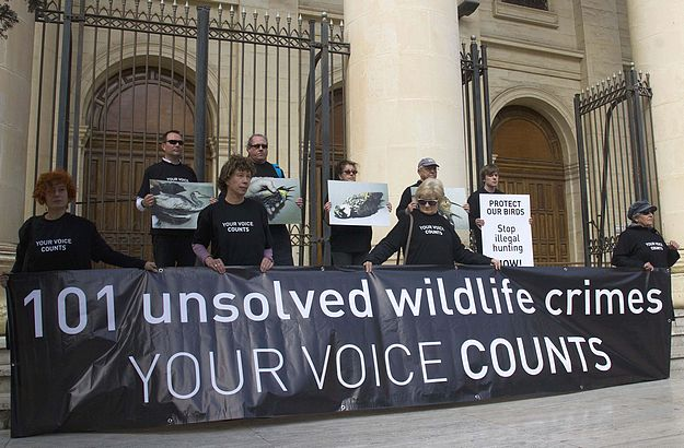 Birdlife Malta conservatonists call for urgent political aciton