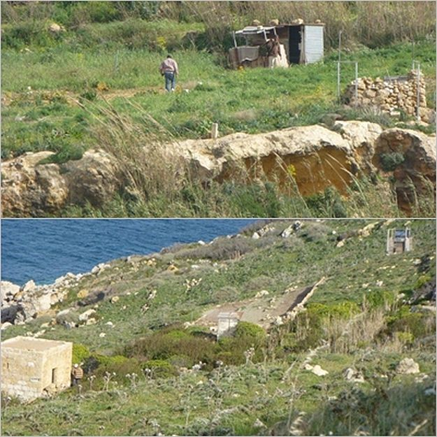 """Illegal trapping is already rife on Gozo"" - Readers Letter"