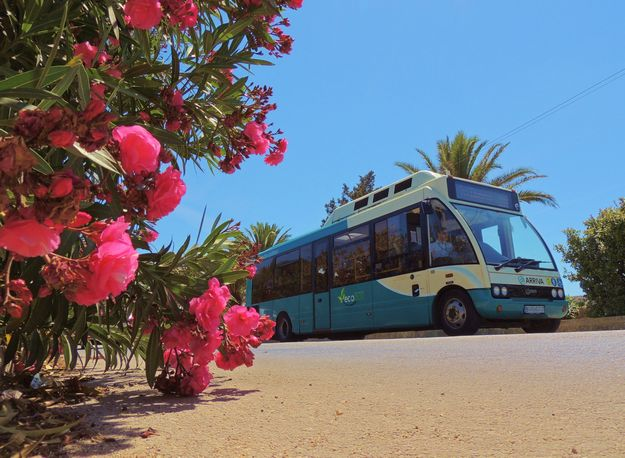 Arriva buses switch to the summer schedules on June 30th