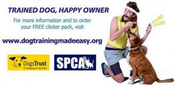 Dog behaviour campaign has wide-ranging public support